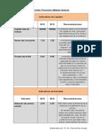 Formato Entrega de Análisis Financiero Guillermo Marconi Larez