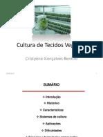 Aula - Cultura de Tecidos