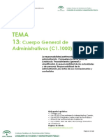 Tema+13.pdf