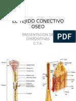 EL TEJIDO CONECTIVO OSEO.pptx