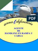 Info Agente Handling Rampa Carga