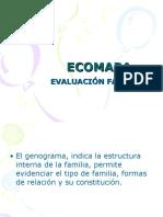 Ecomapa Ciclo Vital 6