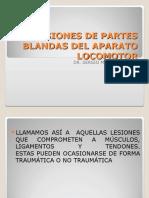 3. Lesiones de Partes Blandas Del Aparato Locomotor (03.08)