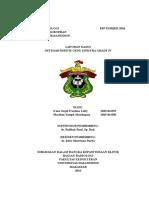 Laporan Kasus Osteoarthritis Genu Sinistra Grade IV