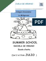 Proyecto Escuela Verano