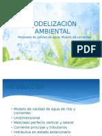2-Modelado Calidad Agua Modelo de Corrientes