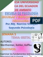 Clase 5 Gestalt 2016 Narciza Villegas