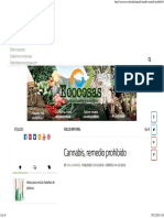 Cannabis, remedio prohibido.pdf