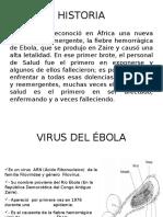 Virus Del Ébola Blanco