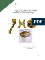 Apuntes 20098 Neurooftalmologia 2011