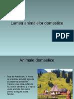 Lumea Animalelor Domestice