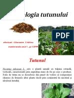 LI Tehnologia Tutunului
