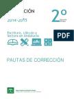 Pautas de Corrección ESCALA 2015
