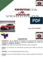 Experticia de Vehiculo