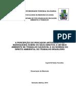 A Percepção Do Pescador Artesanal e Da Marisqueira Sobre Os Seus Direitos a Um Meio Ambiente de Trabalho Saudável e as Normas Do Direito Ambiental Do Trabalho Brasileiro