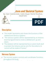 nervous system   skeletal system  2