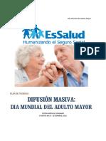 Plan Día Mundial del Adulto Mayor.pdf