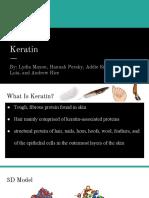keratin protein  1   1