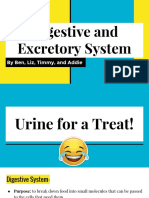 digestive and excretory