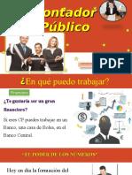PERFIL DEL CONTADOR.pps