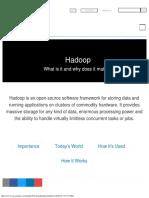 What is Hadoop_ _ SAS