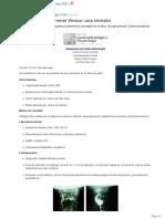 Sindrome de Plummer Vinson- Una Revision