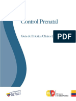 Guia Control Prenatal.pdf