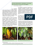 Fertilización NPK.pdf