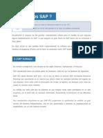 Que es SAP.pdf