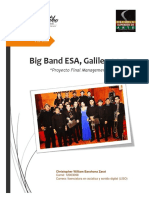 BIG BAND ESA Management