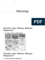 Petrol Ogi