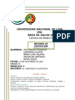 Informe Semio - Grupo 3