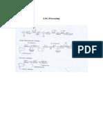 LNG - Proc.pdf