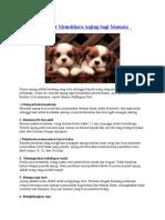 10 Manfaat Memelihara Anjing Bagi Manusia