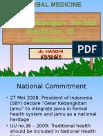PERKEMBANGAN HERBAL MEDICINE DI INDONESIA [Repaired].pptx