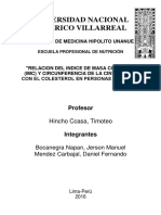 Universidad Nacional Federico Villarrea Final1
