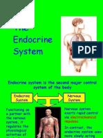 Endocrine Lab 1