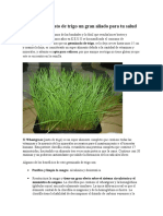 wheatgrass-140418101658-phpapp01