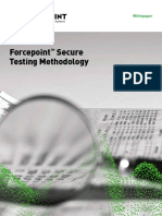 Whitepaper Secure Testing Methodology En