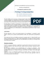 Patologia-Faringoamigdalina.pdf
