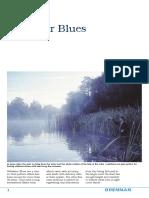 Stillwater Blue