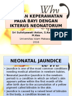Eng_asuhan Keperawatan Pada Bayi Dengan Ikterus Neonatorum