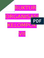 Struktur Organisasi Kelompok Vii