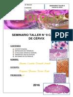 Informe Taller CA Cérvix