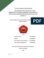 Laporan Praktikum Pelayanan Resep 1.6