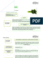 Apio Verde Selecto