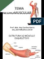 Neuromuscular an A