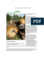 Pine_Bark_And_Needles_As_Food_2010.pdf