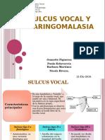 Sulcus Vocal y Laringomalasia