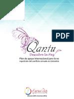 Qantu, Plan de Apoyo Internacional para la no Repetición del Conflicto Armado en Colombia